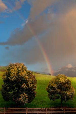 rainbow-dublin-1